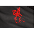 20/21 Liverpool  Training Suit Dark gray